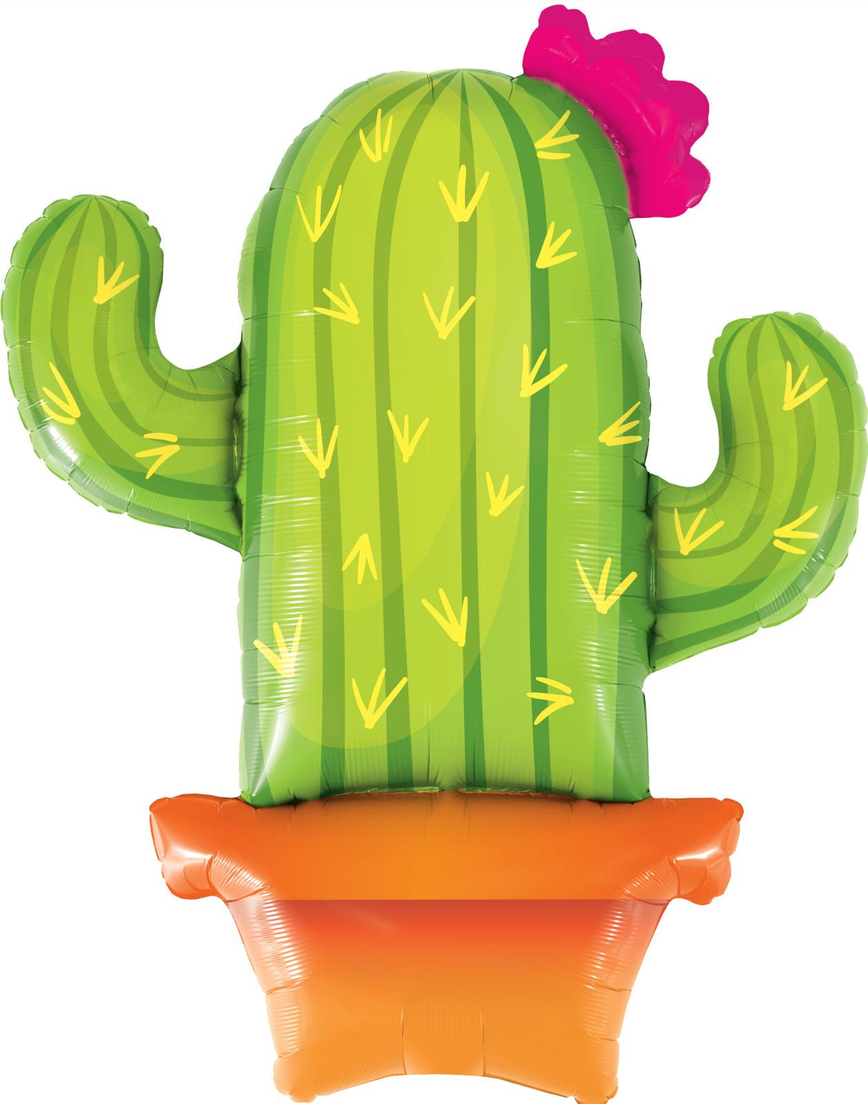 Cactus & Llamas